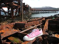 Appropriate Environment (ZinK) Tags: pink stars shoe all retro converse taylor chuck chucktaylors allstars zink