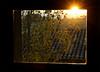 Explosión en la ventana (johan 14) Tags: sol lafotodelasemana ventana explosion catalonia catalunya joserri cataluña tarragona altcamp lfscontraluces nulles