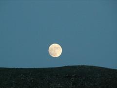 Luna (ababol) Tags: lafotodelasemana lfscontraluces ababol lfsminimalismo