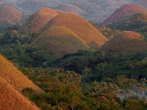 Bohol's Chocolate Hills