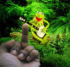 Bird Meets Frog