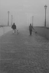 Cold Morning (Diodoro) Tags: people blackandwhite bw espaa blancoynegro fog spain gente bn salamanca niebla questfortherest castillayleon 100vistas 123bw