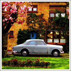suburbia (kiplingflu) Tags: street flowers house topf25 volvo belgium belgique suburbia belgië topv belgica amazone abigfave abigfav