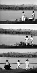 kids [triptych] (rumorebianco) Tags: portrait people bw lake kids 35mm children feeding streetphotography contax mantova nocrop