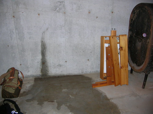 147562468 7d9bd99801 Leaking Basement
