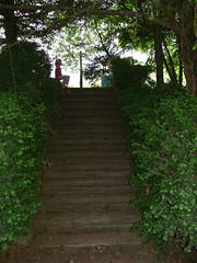 Secret Garden (Jumpin'Jack) Tags: shadow nature stairs cool steps slovenia shade botanicalgarden maribor pivola jpingjk