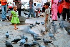 fly....fly away... (Arpana/Rajal) Tags: people blur birds kids children fly nikon pigeons bombay fujifilm mumbai gatewayofindia