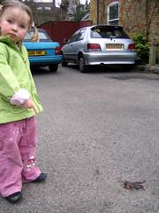 Dead Frog (Mr Jaded) Tags: car dead frog urbanwildlife roadkill squashed deadfrog