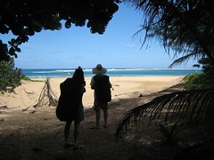IMG_3852 (sygyzy) Tags: vacation green hawaii kauai hanaleibay