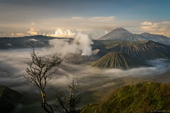 Killing beauty (nicointhebus (nicolas monnot)) Tags: travel travelling nature indonesia landscape volcano java earthquake bravo scenery asia 500v20f 2006 southeast bromo nicointhebus fivestarsgallery