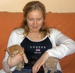 Kitipildid (66) (Siki:)) Tags: kass kiisud punane