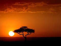 Sunset in Kenya (eir@si) Tags: africa 500v20f kenya 1500v60f tvera
