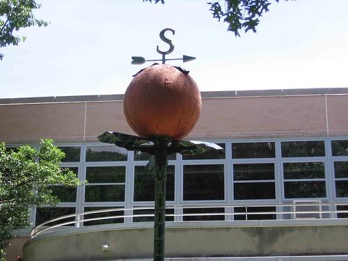 South Orange orange