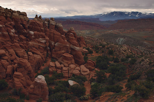 Fiery Furnace and More