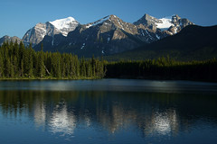 Bow Lake (BitHead) Tags: canada mountains rockymountains banffnationalpark bowlake