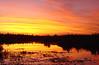 DSC04292_1 (ShayMozes) Tags: sunset better esterosdelibera fcsetsrises
