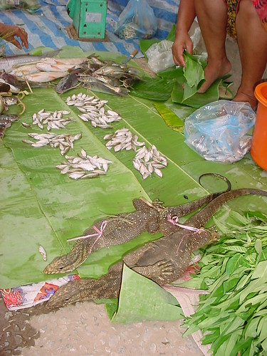 Fresh lizards and fish from Mekong, Laos
