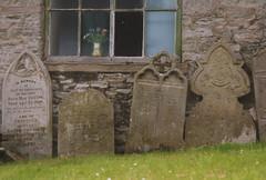 faithfully departing (Viacreativa) Tags: old green church chapel graves churchyard welsh hayonwye gravestones capel anenomes flowersinthewindow