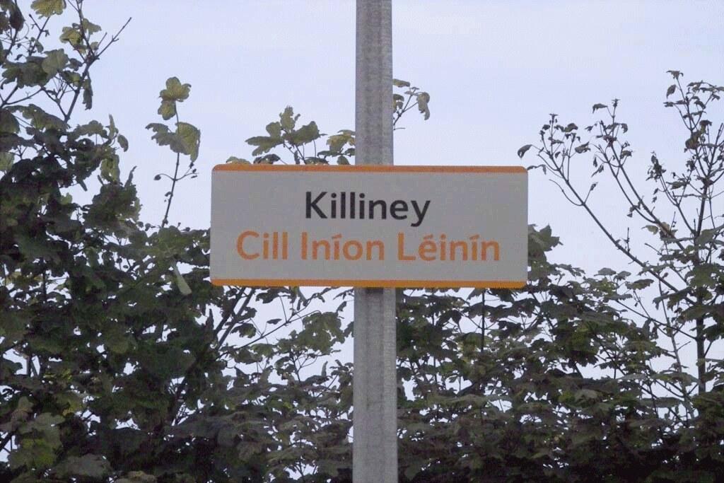 KILLINEY DART STATION