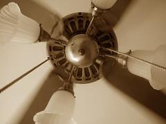 Ceiling Fan at Hotel Del (utah raptor) Tags: hotel haunted coronado hoteldelcoronado