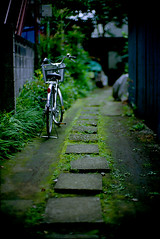 a little path (hk2006) Tags: leica bike kodak path 100uc m6 noctilux50f12nd