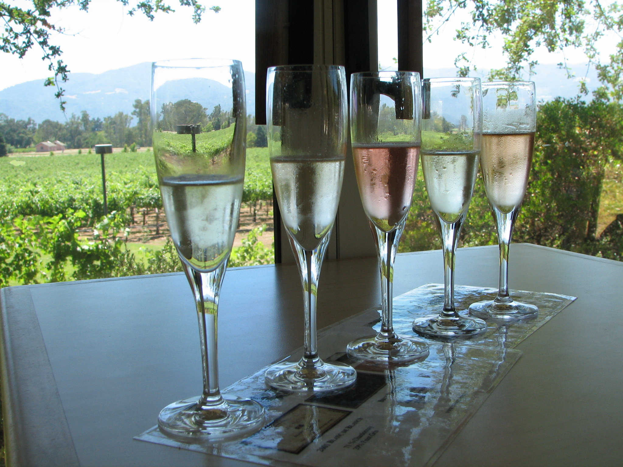 Champagne Vineyard Thanks to: http://praziq.blogspot.com/