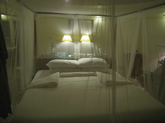 IMG_0197 (thebadpete) Tags: honeymoon maldives banyantree