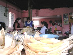 Preparación de tamales mujeres mexicanas Durango México Sierra Madre América Latina