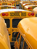 SCHOOL BUS (shutterBRI) Tags: nyc travel ny newyork bus buses yellow tag3 taggedout brooklyn canon coneyisland photography photo tag2 tag1 2006 powershot repetition schoolbus a80 shutterbri brianutesch flickrchallengegroup flickrchallengewinner photofaceoffwinner pfogold brianuteschphotography