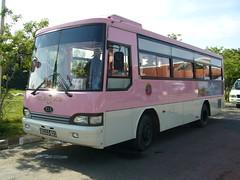 Angkor粉紅小巴