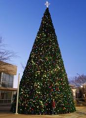 20161210_172741_23_rdl.jpg (radialmonster) Tags: christmastree triangetowncenter sheila radialmonster raleigh northcarolina unitedstates us