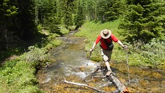 Little Arethusa Hike -  Ben crosses the creek without falling in... (benlarhome) Tags: mountain canada forest trekking trek movie kananaskis rockies track hiking path walk meadow hike trail alberta summit rockymountain wildflower larch littlearethusa