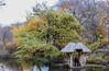 _DSC4592 (purin_cess) Tags: centralpark 2016 autumn 11月 十一月 秋 中央公園 紐約 ny newyork