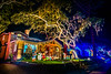 DSC04285--Pacific Grove, CA (Lance & Cromwell back from a Road Trip) Tags: pacificgrovexmas pacificgrove christmas christmaslights 2016 montereypeninsula montereycounty california