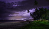 Bohol (free3yourmind) Tags: bohol island philippines lightning trees beach night clouds cloudy palms sea