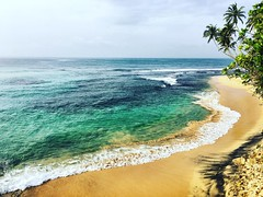 Leading Wave (Joseph AL-Ruwaished) Tags: photography iphoneography waves srilanka tropics tropical palmtrees ocean beaches sand