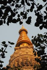 "PB140675-a (photozaki) Tags: india ""sujata kuti"" ""mahabohi temple"" ""mahabodhi mahavihara temple ""buddhist buddha buddhism ""bodhi tree"" bodhgaya gaya buddhist monk monks ashoka enlightenment ""vajrasan diamond throne"""