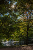 In love with autumn (Zaphod Beeblebrox 1970) Tags: paar ruhrgebiet deutschland herbst himmel germany laub bochum bäume trees kissing baum tree ruhr couple golden love sky hugging verliebt stadtpark autumn herbstlaub