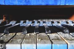 Blue tones... (Denisa Colours of Decay) Tags: abandoned abandonedplaces urbex urban exploration piano forgotten germany