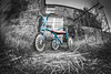 Past and present (climbing the walls) Tags: tricycle child toy blackandwhite outside straw farmhouse cottage yesteryear timegoneby retro vintage landscape gate justoneclick urbanexplore greatfind happynewyear 2017