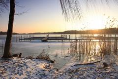IMG_3223 (wozischra) Tags: berlin heiligensee spaziergang baumberge höchster baum altheiligensee