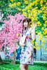 (Lap Phong Xinh Trai) Tags: lunar year lunaryear wellcome 2017 yellow pink apricot blossoms girl cute deep japan vietnam taiwan hongkong lapphong shooting by me trang teen tết nguyên đán sườn xám cheongsam china kawaii beautiful beauty woman portrait outdoor sunlight natural naturallight young glamour accessories actress face awesome urban