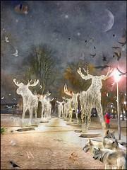 Moose parad .. (Urban Swenning) Tags: art artist drawing artwork painting sketch contemporaryart illustration draw artcollector instaart arte artoftheday creative urbii ink paint artgallery watercolor acryl moose