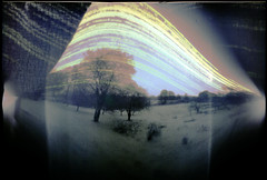 Summer and winter in one (batuda) Tags: pinhole obscura stenope lochkamera analog analogue can beercan paper kodak polymax 16x18 solargraphy solarigraphy solarigrafia solargraph sun solar path trail track arch sunpath color colour epson 4490photo summer autumn fall winter solstice landscape garden tree trees leaves foliage ground snow sky reflections šinkūnai tauragnai utena lithuania lietuva