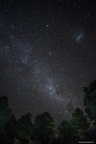 Cielo estrellado en Huilo Huilo