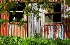 An old workshop (Premysl Fojtu) Tags: old workshop shed derelict decay windows broken abandoned rusty landscape scotland orkney kirkwall canon