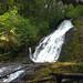 Explore Oregon Recreation: Alsea Falls