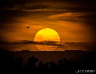 Manchas solares al  atardecer [Aapod]