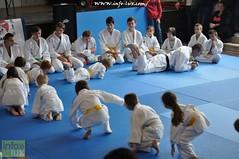 Judo-habay032