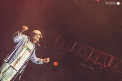 Samba In Rio Festival 2015 (Leandro Ribeiro Photography) Tags: carnaval festivaldesamba apoteose martinhodavila leandroribeiro sambainrio profissofotgrafo leandroribeirophotography martinhodavilanosambainrio sambainriofestival